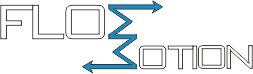 Flowmotion – wsparcie IT dla Ciebie